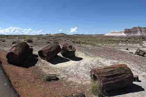Arizona, Petrified Forrest, Crystal Forest